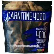 Carnitine 4000 Power Pro (500 гр.)