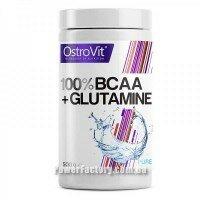 100 % Bcaa + Glutamine 500 грамм