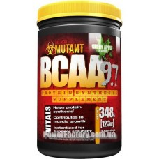 BCAA 9700 348 грамм